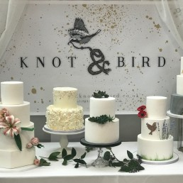 Knot and Bird